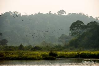 Crocodile Lake, Vietnam