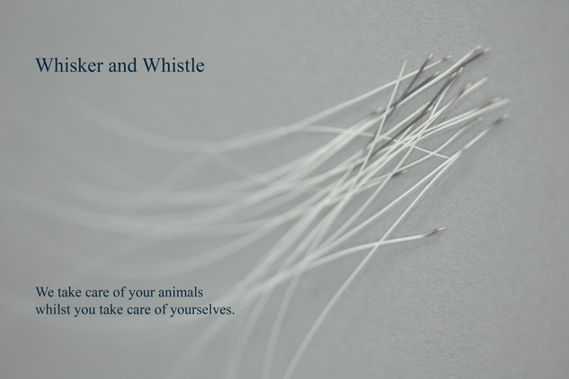 whisker and whistle