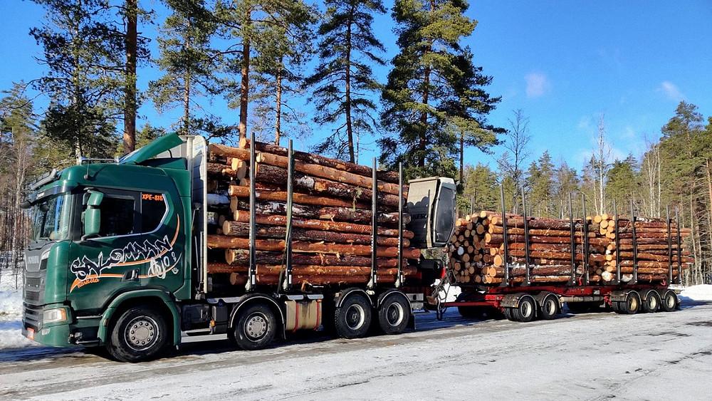 Holz LKW beladen