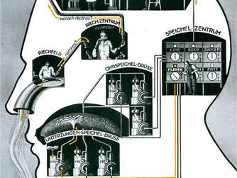 Dr. Fritz Kahn and his adventurous journey through the human body