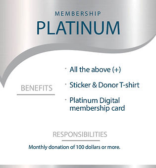 4-Platinum.jpg