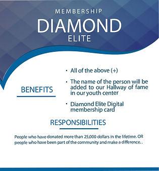 6-Diamond-Elite.jpg