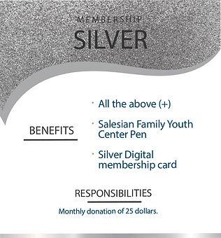 2-Silver.jpg