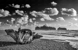 Rialto Beach - Washington