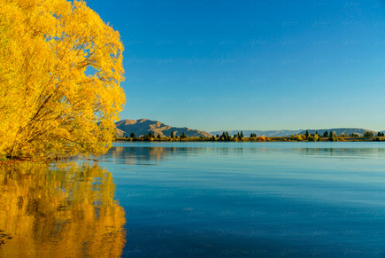 Fall at Lake Ruataniwha