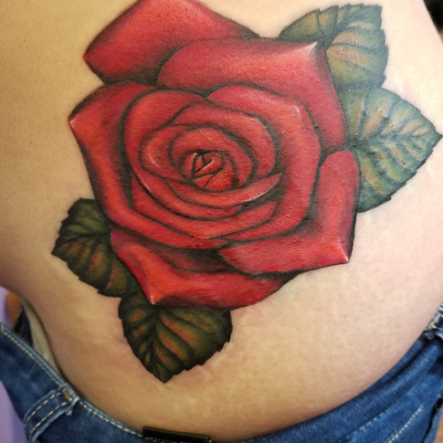 Rose cover up