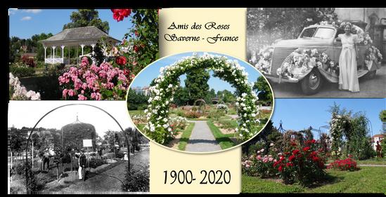Carte éditée pour les 120 ans du jardin de la roseraie de Saverne