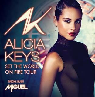 Set The World On Fire Tour (2013)