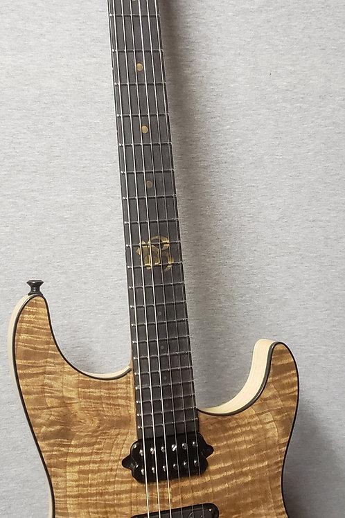 B3 Ultra Modern Custom-Built Guitar with Hard Shell Case