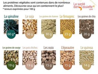 Les protéines végétales 🍶