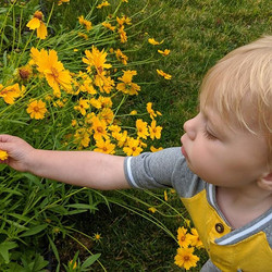 Liam loves our garden's flowers