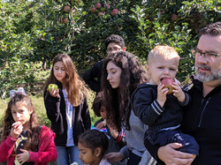 Apple picking with the cousins