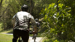 Rotary_Ride_Mountain_Bike_Trail_Image_1U0A2003_GalleryLarge.CUBbiw
