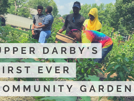 Upper Darby's First Ever Community Garden Opens