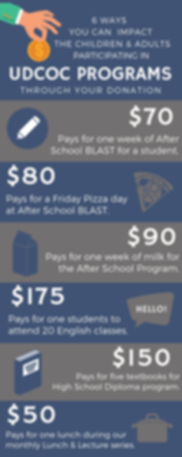 Donation Infographic (3).png