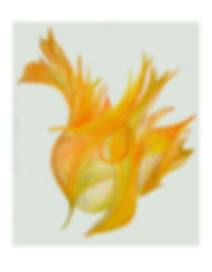 Zlatožlutá barva aury Michaela Valová