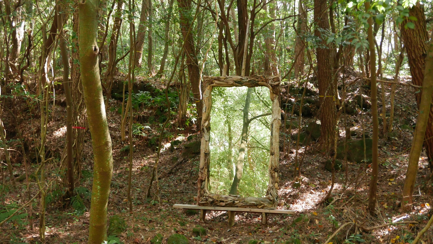 "Forest mirror ""Each other"""