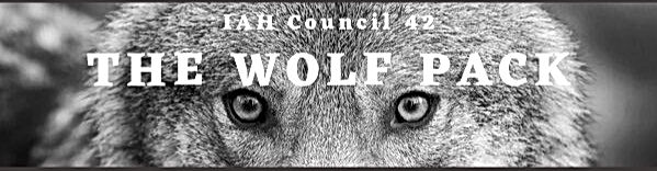 email%20header%20wolf_edited.jpg