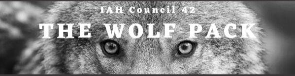 email%20header%20wolf_edited.jpg