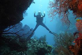 Marina Walser - Swimthrough