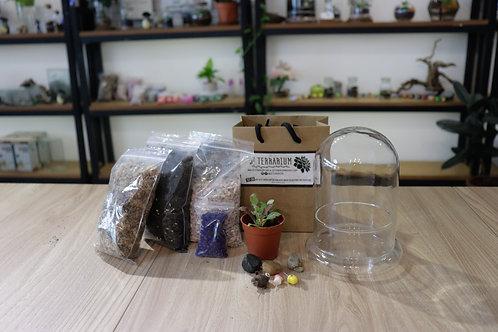 J2 Closed Terrarium - DIY Kit