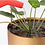 Thumbnail: Nordic Hanging Pot