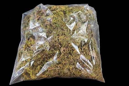 Dried Sphagnum moss