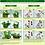 Thumbnail: HB101 Plant Vitalizer