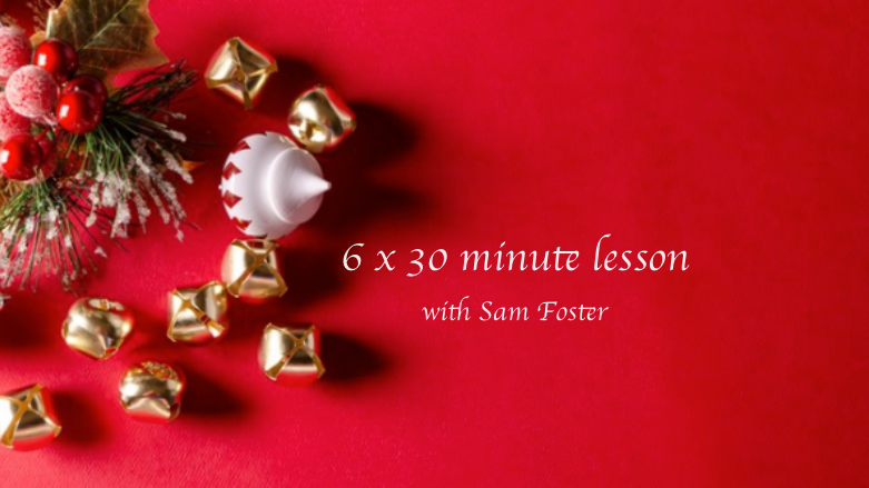 6 x 30 min lessons with Sam