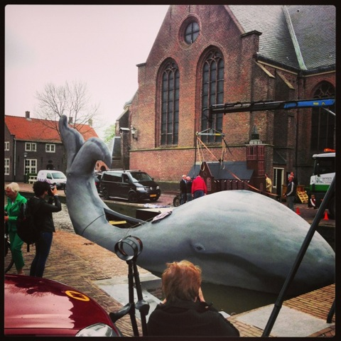 walvis koningsdag De Rijp