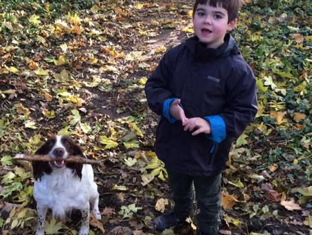 Alfie's Story - One Step Closer To Making Medical Cannabis Legal?
