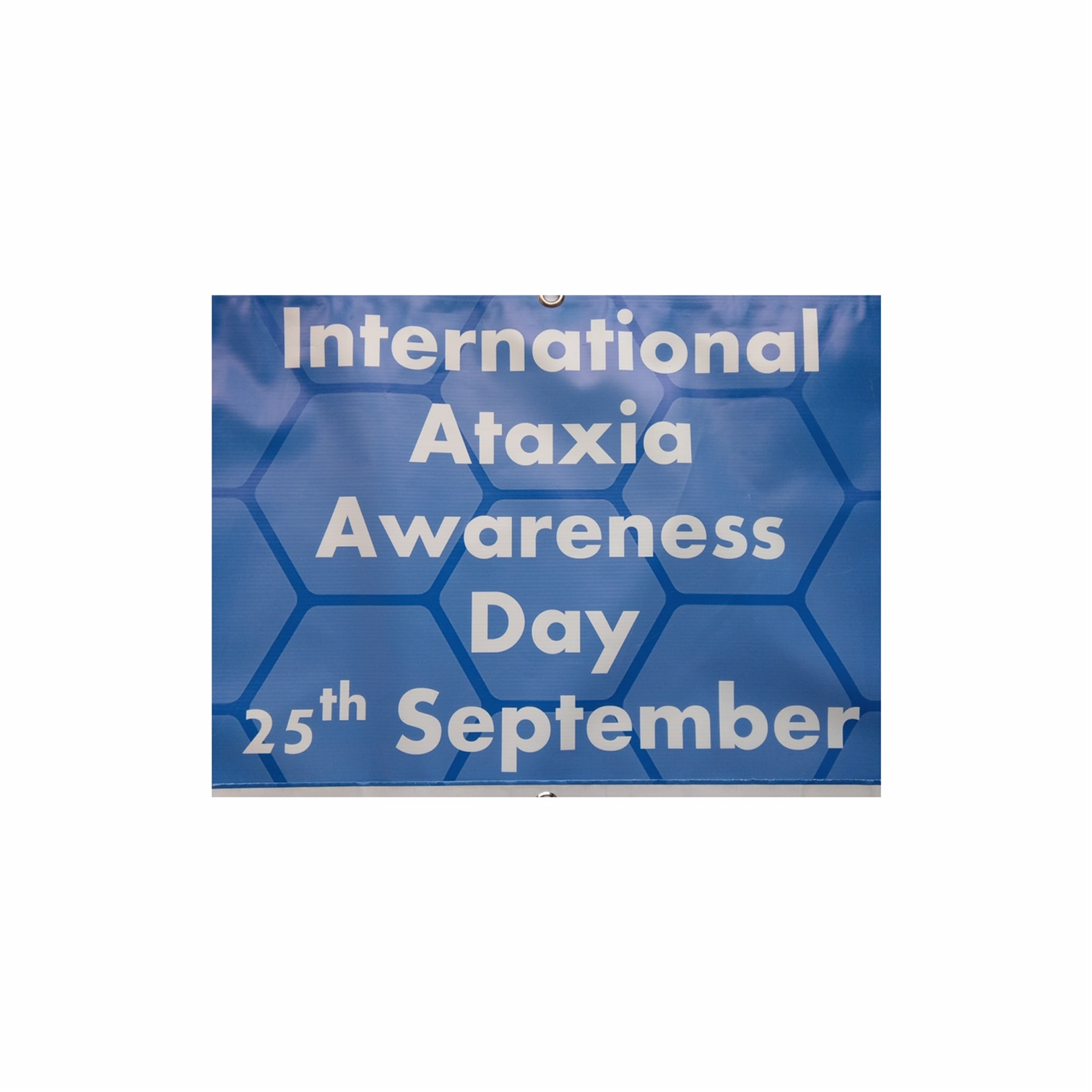 international ataxia awareness.jpeg
