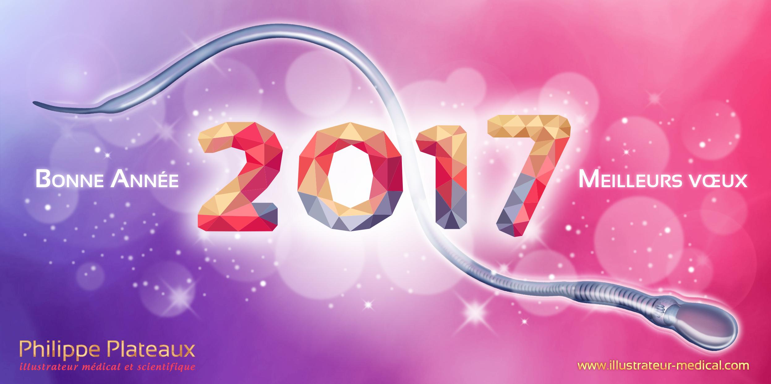carte de vœux 2017