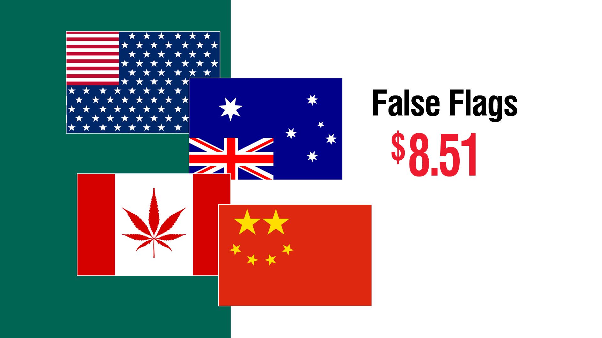 120_06_Bunnings_FALSE_FLAGS.png