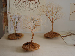 arbre toupie