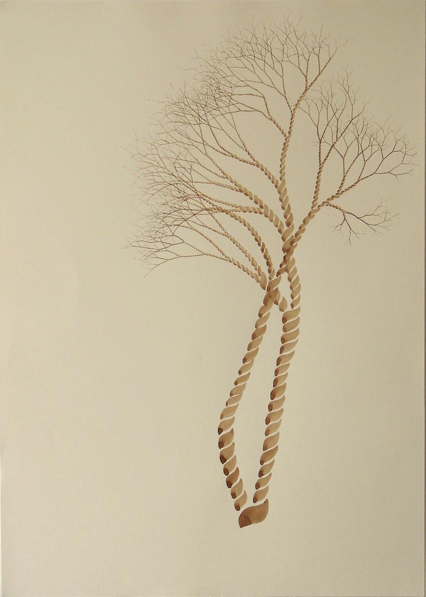 dessin arborescence2