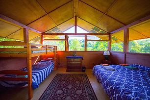 rollinia-cabin-jungle-reiki-retreat.jpg