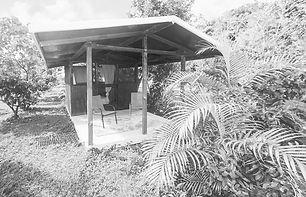 milo-cabin-jungle-reiki-retreat-2_edited