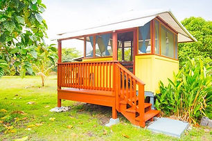 cacao-cabin-jungle-reiki-retreat.jpg