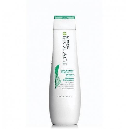 Shampoo AntiGrasso