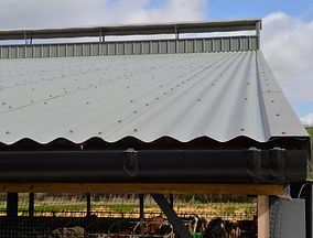 Close up insulated roof on robotic dairy unit