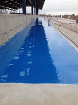 Feed barrier coating