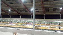 LED cow shed light