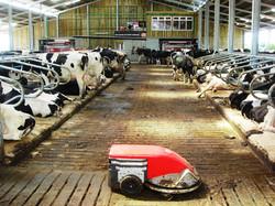 Free access milk robot unit