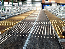ZigZag rubber on scrape passage in cow shed