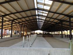 New robotic dairy housing