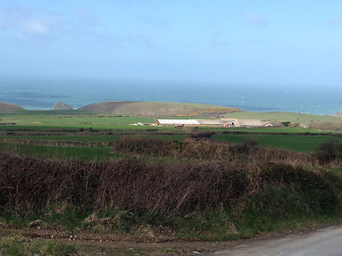 Trecarne farm - close to the sea