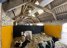 Calf ventilation system  - old barn