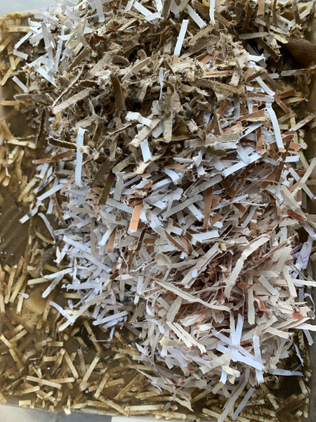 Shredded paper for pulping