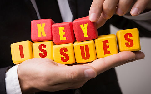 Key Issues for IT Healthcheck